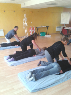 formation shiatsu paris
